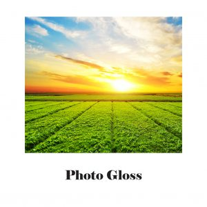 Image of endless green fields with a blue sky and a setting sun. Photo gloss paper.