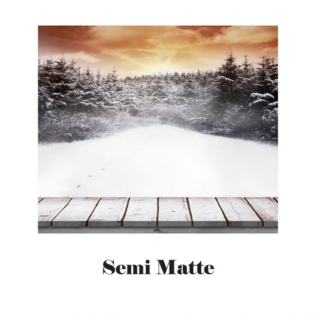 Image of a a snowy forest with a wooden boardwalk. Satin matte paper.