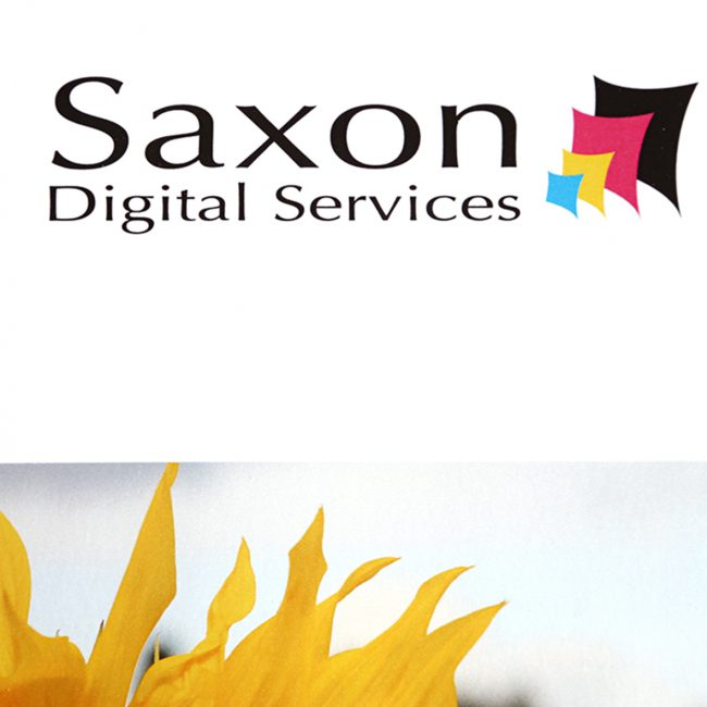 Saxon Digital Services logo for gloss posters.